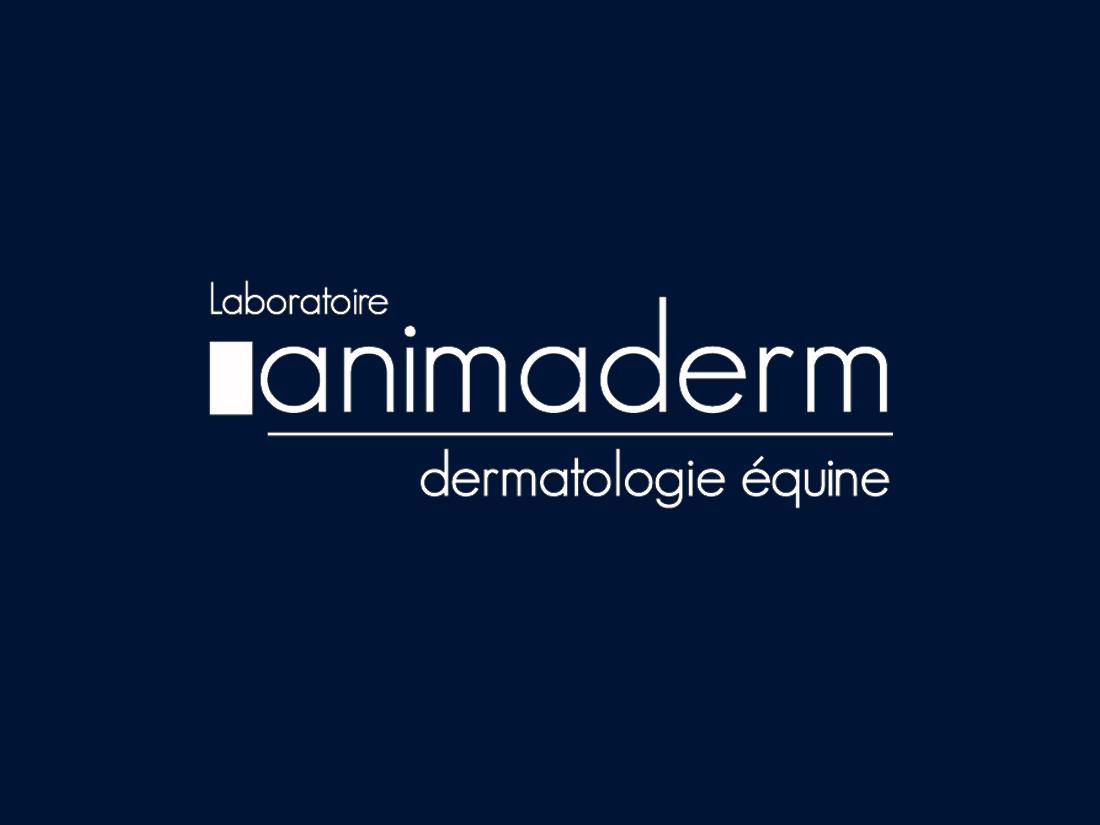 Animaderm_hfi_horse2