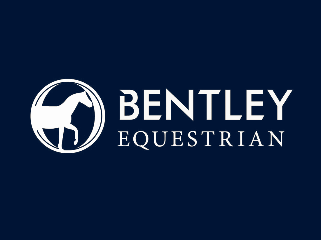 bentley_hfi_horse
